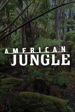 American Jungle