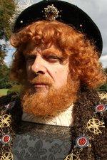Horrid Henry VIII Special