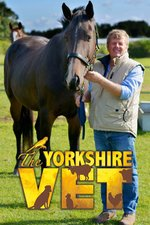 The Yorkshire Vet