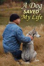 A Dog Saved My Life