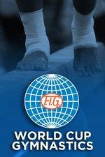 FIG World Cup Gymnastics