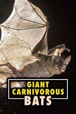 Giant Carnivorous Bats