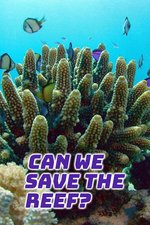 Can We Save The Reef?