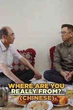 Where Are You Really From?(Chinese)