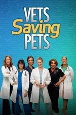 Vets Saving Pets