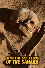 Mystery Skeletons of the Sahara