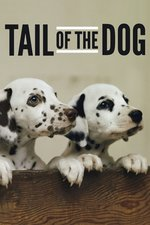Tail of the Dog