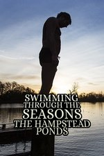 Swimming Through The Seasons: The Hampstead Ponds