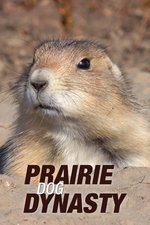 Prairie Dog Dynasty