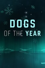 Dogs of the Year