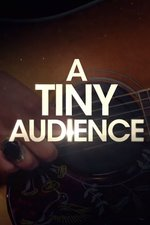 A Tiny Audience