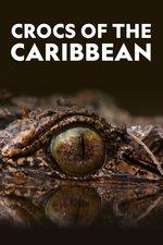 Crocs of the Caribbean