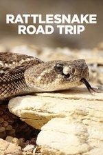 Rattlesnake Road Trip