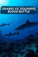 Sharks vs. Dolphins: Blood Battle