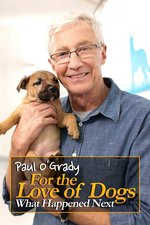 Paul O'Grady for the Love of Dogs: What Happened Next