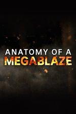 Anatomy of a Megablaze