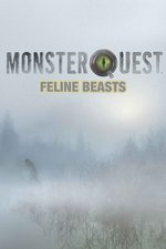 MonsterQuest: Feline Beasts