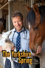 The Yorkshire Vet In Spring