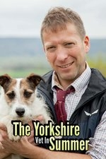 The Yorkshire Vet In Summer