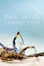 The Wild Connection