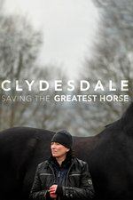 Clydesdale: Saving the Greatest Horse