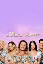 TL;DR - Bachelor in Paradise