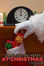 Small Gift, Big Heart at Christmas