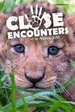 Close Encounters of the Animal Kind
