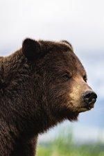 Alaska: Last American Frontier