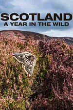 Scotland: A Year in the Wild