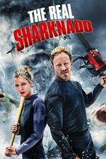 The Real Sharknado