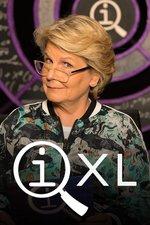 QI XL
