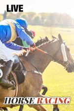 Live: Horse Racing