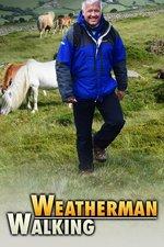 Weatherman Walking