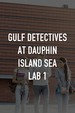 Gulf Detectives at Dauphin Island Sea Lab 1